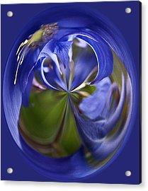 Purple Orb Acrylic Print by Ron Roberts