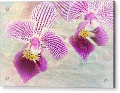 Purple Orchid 2 Acrylic Print