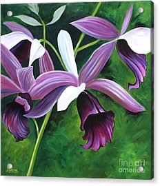 Purple Orchid Acrylic Print by Debbie Hart