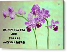 Purple Orchid Quote-2 Acrylic Print by Rudy Umans