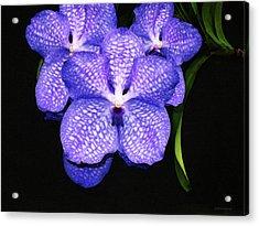 Purple Orchids - Flower Art By Sharon Cummings Acrylic Print by Sharon Cummings