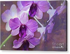 Purple Orchids Acrylic Print by Sally Simon
