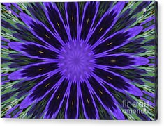 Purple Pansy Star Graphic Art Acrylic Print