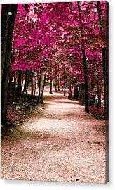 Acrylic Print featuring the photograph Purple Pass by Raymond Earley
