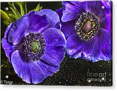 Purple Passion Acrylic Print by Tracy  Hall