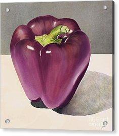 Purple Pepper Acrylic Print