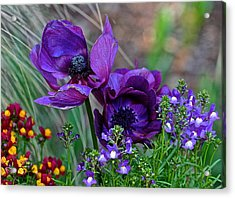 Purple Perfection Acrylic Print