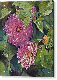 Purple Pinwheels Acrylic Print