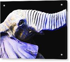 Purple Rein - Vibrant Elephant Head Shot Art Acrylic Print by Sharon Cummings