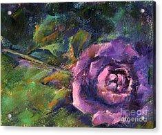 Purple Rose Acrylic Print by Addie Hocynec