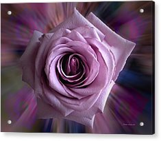 Purple Rose Acrylic Print by Thomas Woolworth