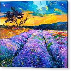 Purple Scene Acrylic Print by Ivailo Nikolov