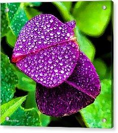 Purple Shimmer Acrylic Print