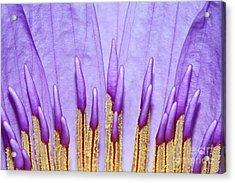 Purple Spires Acrylic Print