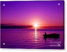 Acrylic Print featuring the photograph Purple Sunrise by Yew Kwang