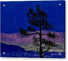 Acrylic Print featuring the drawing Purple Sunset Bay by D Hackett