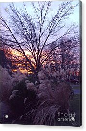 Acrylic Print featuring the photograph Purple Sunset by Lyric Lucas