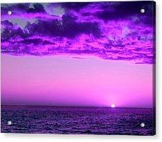 Purple Sunset Acrylic Print by Steed Edwards