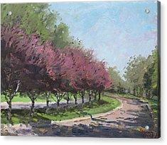 Purple Trees  Acrylic Print by Ylli Haruni