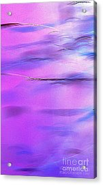 Purple Wave Acrylic Print by JCYoung MacroXscape