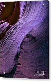 Purple Waves Acrylic Print by Mike  Dawson