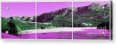 Purple Winter Triptych Acrylic Print by Barbara Griffin
