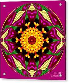 Purple Yellow Flower Orb Acrylic Print by Annette Allman