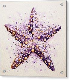 Purpura Starfish Acrylic Print