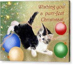 Purr-fect Christmas Greetings  Acrylic Print