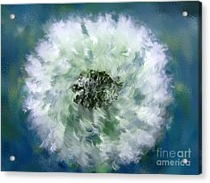 Pursuit Of Happiness Blue White Acrylic Print by Holley Jacobs