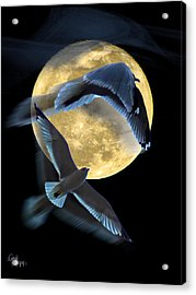 Pursuit Over The Moon. Acrylic Print by Glenn Feron