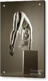 Push Ups Acrylic Print by John Tisbury