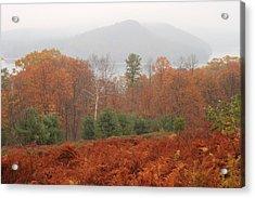 Quabbin Reservoir Late Autumn Oak And Fern Foliage Acrylic Print by John Burk