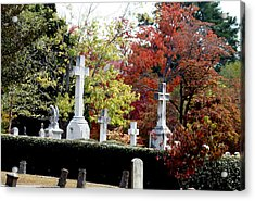 Acrylic Print featuring the photograph Quad Crosses In Fall by Lesa Fine