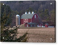 Acrylic Print featuring the photograph Quaint by Gene Walls