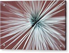 Quantum Sculpture Acrylic Print