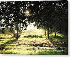 Acrylic Print featuring the photograph Quarry Lakes Sunrise by Ellen Cotton