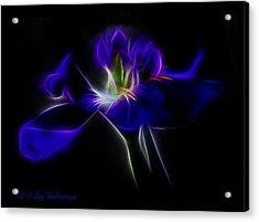 Quasar Iris Acrylic Print