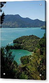 Queen Charlotte Track, Marlborough Acrylic Print by Douglas Peebles