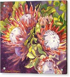 Queen Protea Acrylic Print