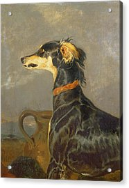 Queen Victorias Favourite Dog, Eos Acrylic Print by Sir Edwin Landseer