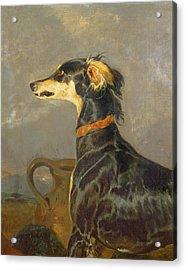 Queen Victorias Favourite Dog, Eos Acrylic Print