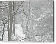 Querida In The Snow Storm Acrylic Print by Patricia Keller