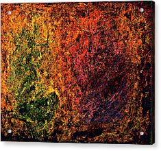 Quest Acrylic Print by Stanley Funk