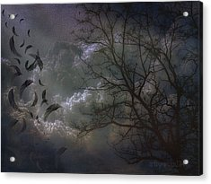 Quiet After The Storm Acrylic Print by Mimulux patricia no No