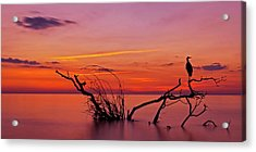 Quiet Evening Acrylic Print