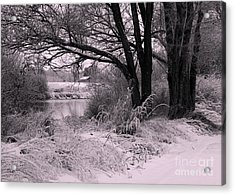 Quiet Morning After Snowfall Acrylic Print by Carol Groenen