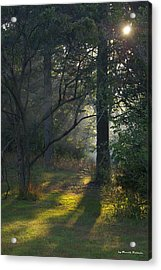 Quiet Morning Acrylic Print by Tannis  Baldwin
