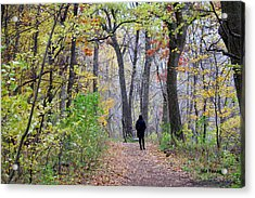 Quiet Walk In The Woods Acrylic Print