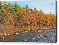Quinapoxet River In Autumn Acrylic Print